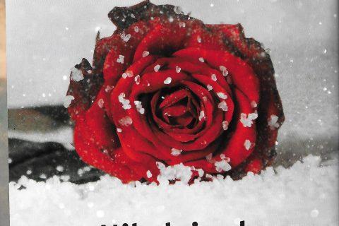 baradell nr. 4 2 copertina